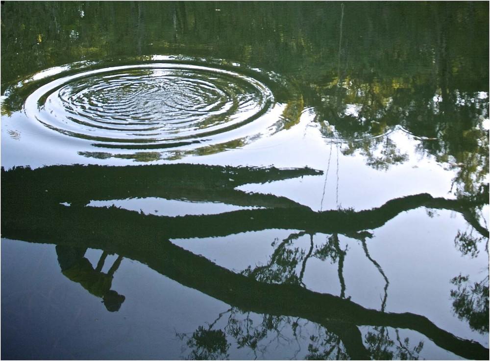Reflections at Nannup Pool