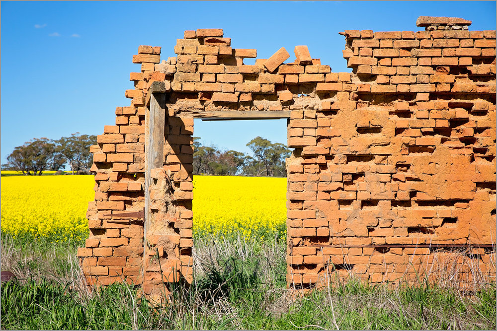 Ruins amongst the Canola Fields