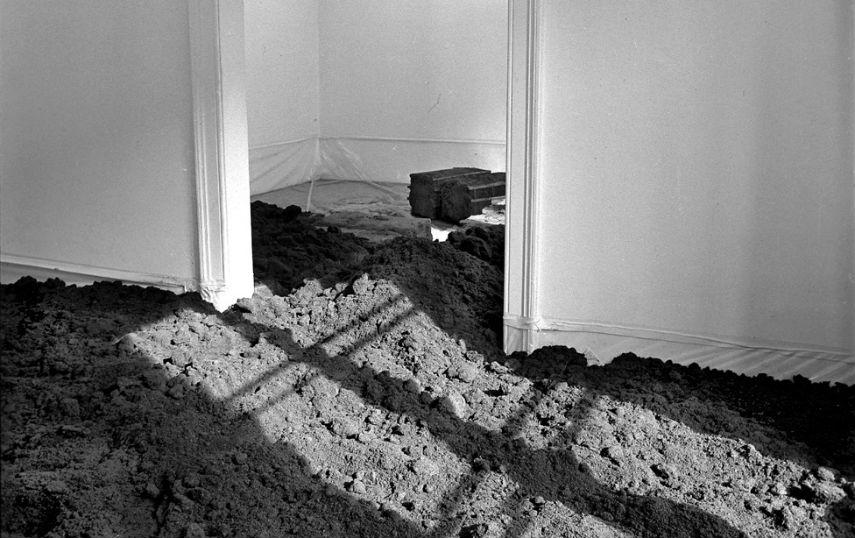 Walter-De-Maria-New-York-Earth-Room-1977-Installation-view-Image-via-surroundnoquamcom.jpg