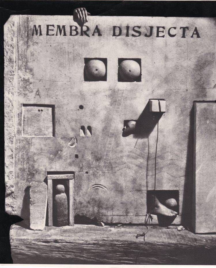 Membra+Disjecta.jpg