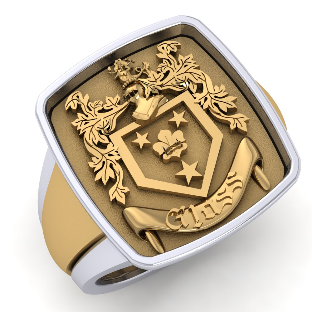 Mens Family Crest Signet Ring Yellow and White Gold.jpg