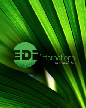 About-EDI