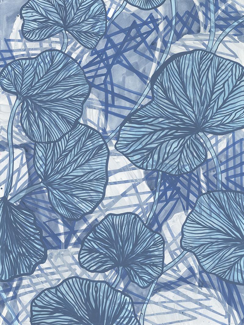 pond-fronds-72dpi.jpg