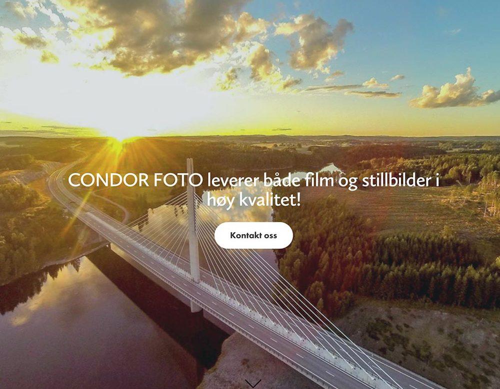 Condor Foto
