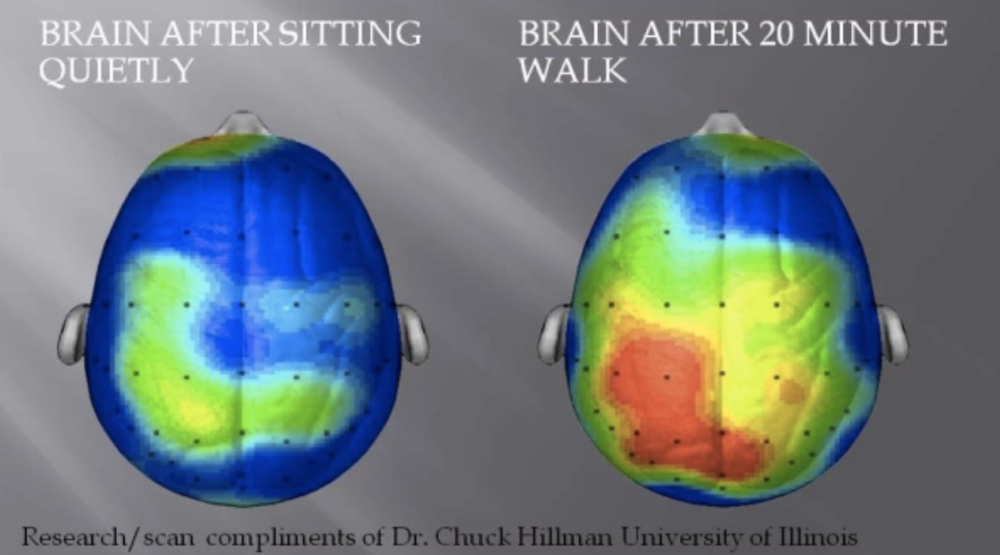 This fMRI image from a study out of University of Illinois shows a large increase in brain activity after just 20 minutes of vigorous walking. The reason you may feel 'sharper' after exercising is all the increased blood flow to the brain that results from exercise!