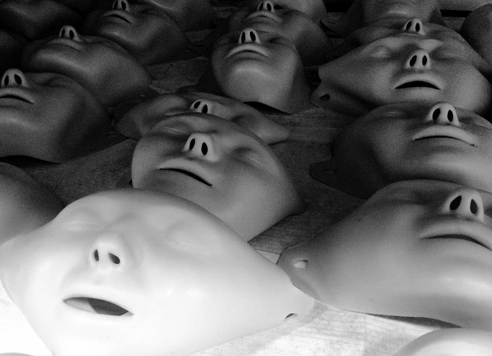 dummies, 2015