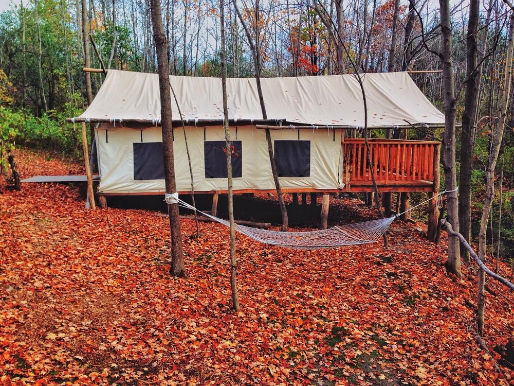 Firelight_Camps