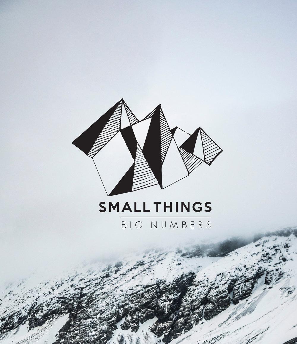SmallThingsBigNumbersPortfolio.jpg