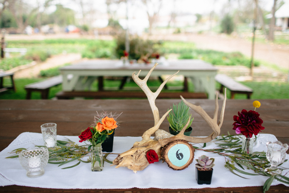 Christina_Will_Springdale_Farm_Wedding_00041.jpg