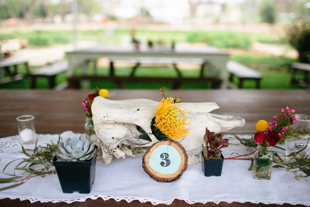 Christina_Will_Springdale_Farm_Wedding_00043.jpg