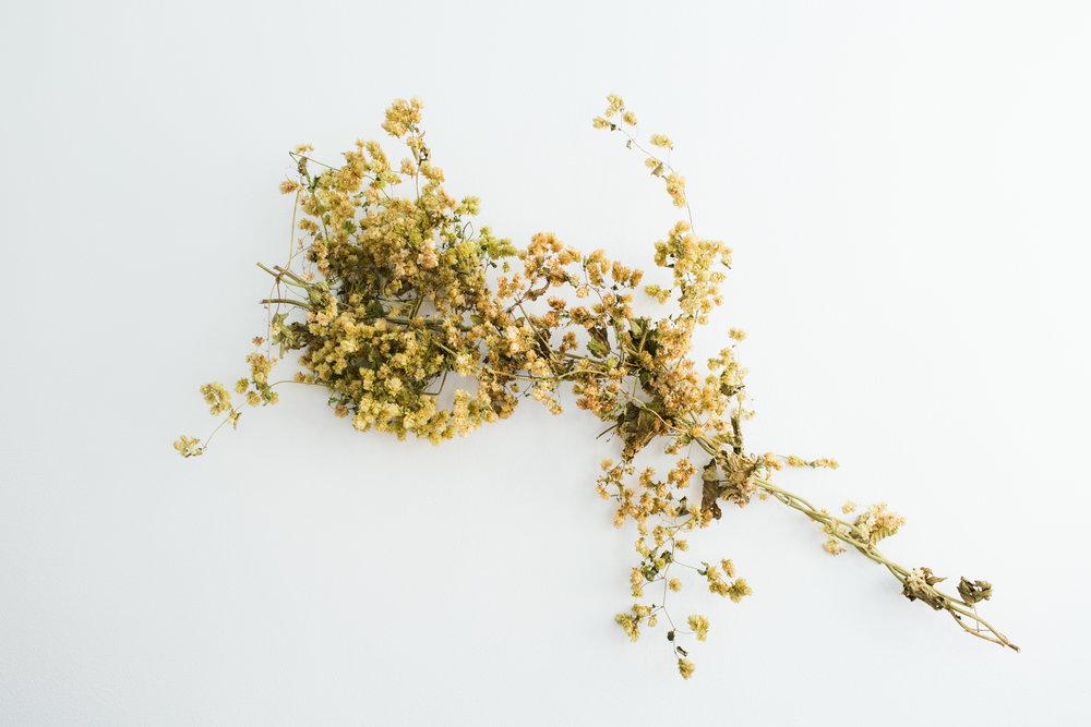Paige-Newton-Photography-Austin-Florist-Fall-Tablescape-001.jpg