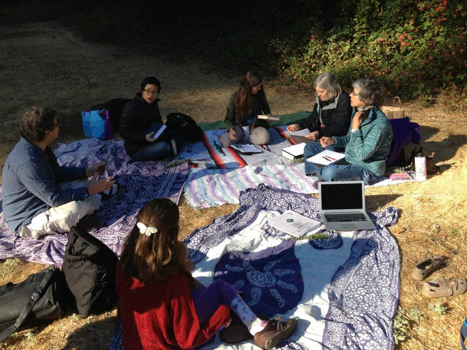 Teaching under the redwoods in Fairfax, CA
