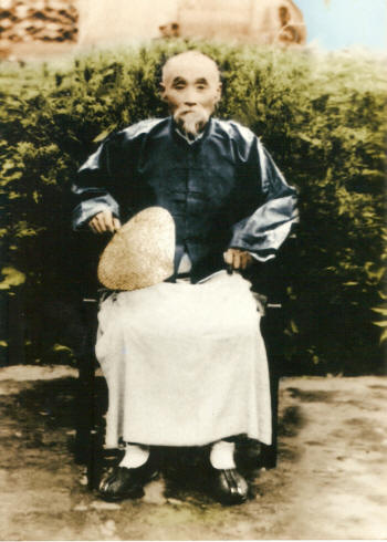 Wang Fengyi