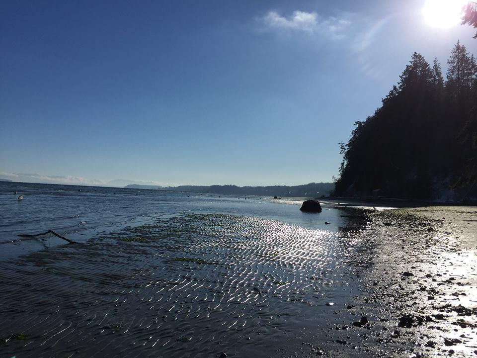 beachripples.jpg