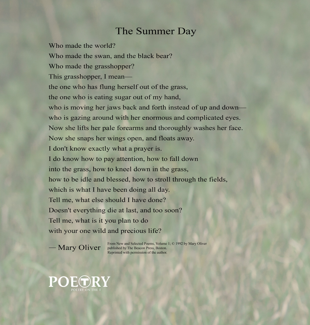 the summer song essay Full glossary for the last song essay questions practice projects cite this literature note summary and analysis chapter 1.