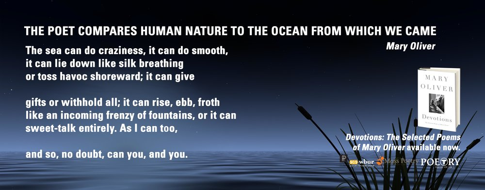 "Mary Oliver, ""The Poet Compares Human Nature To The Ocean From Which We Came"""