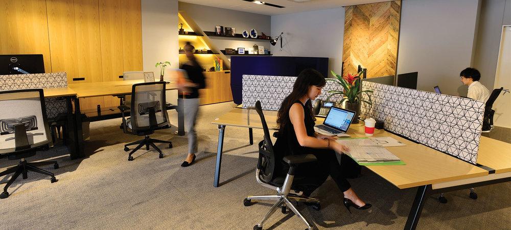 open-office-full-2.jpg