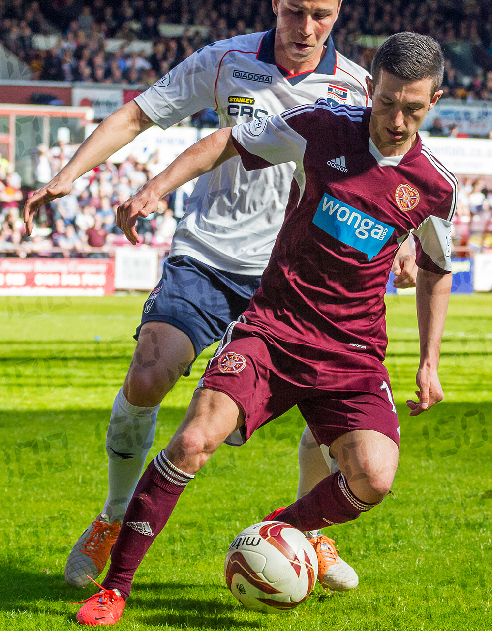 Hearts v Ross County-15.jpg