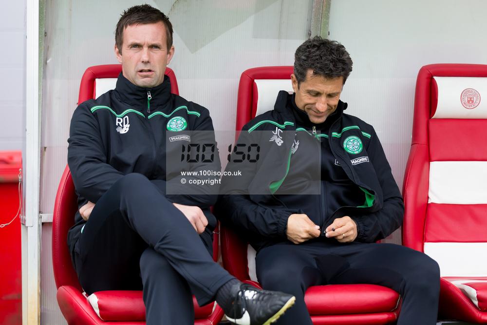 Celtic-6.jpg