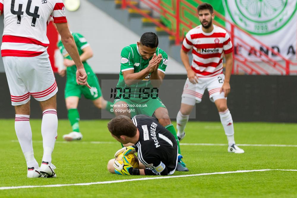 Celtic-44.jpg