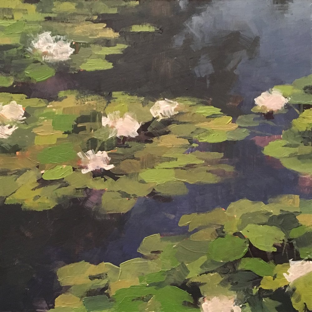 Lily Pad Haven