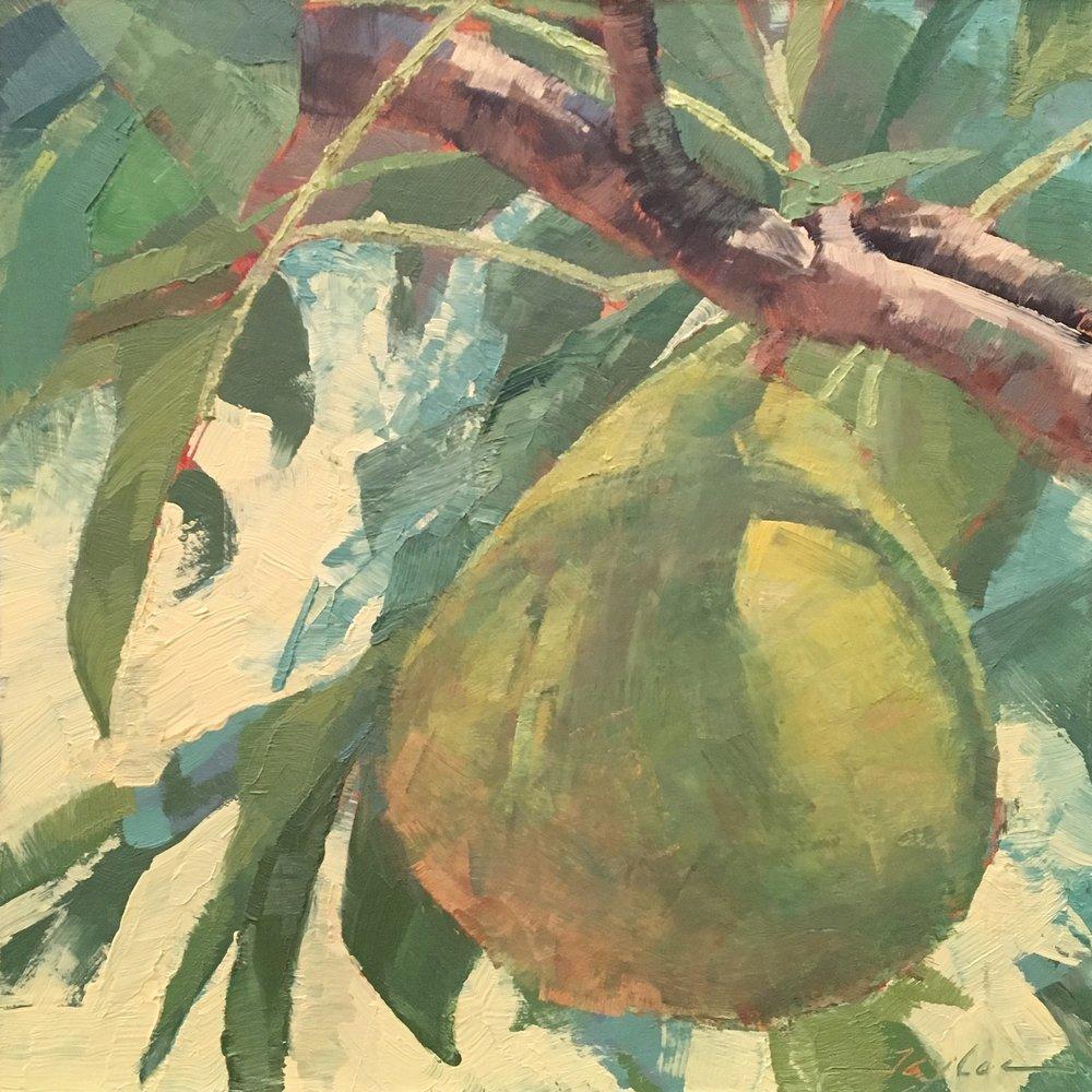 A Pear Emerges