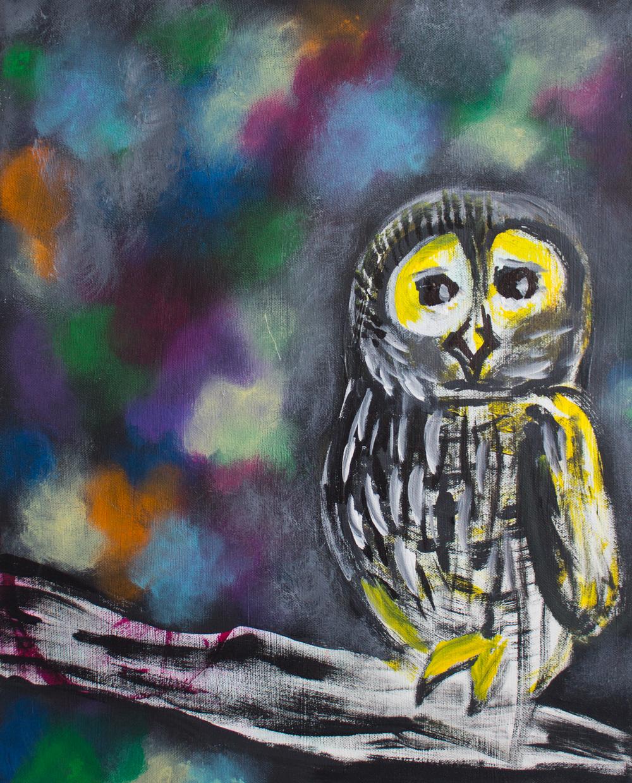 owl2_elanatenner.jpg
