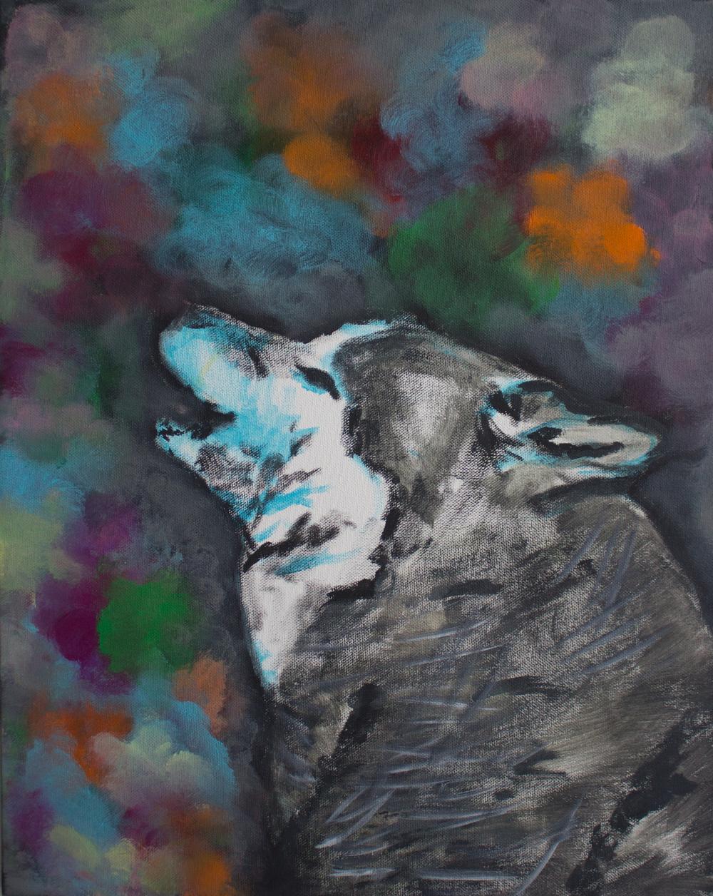 wolf1_elanatenner.jpg