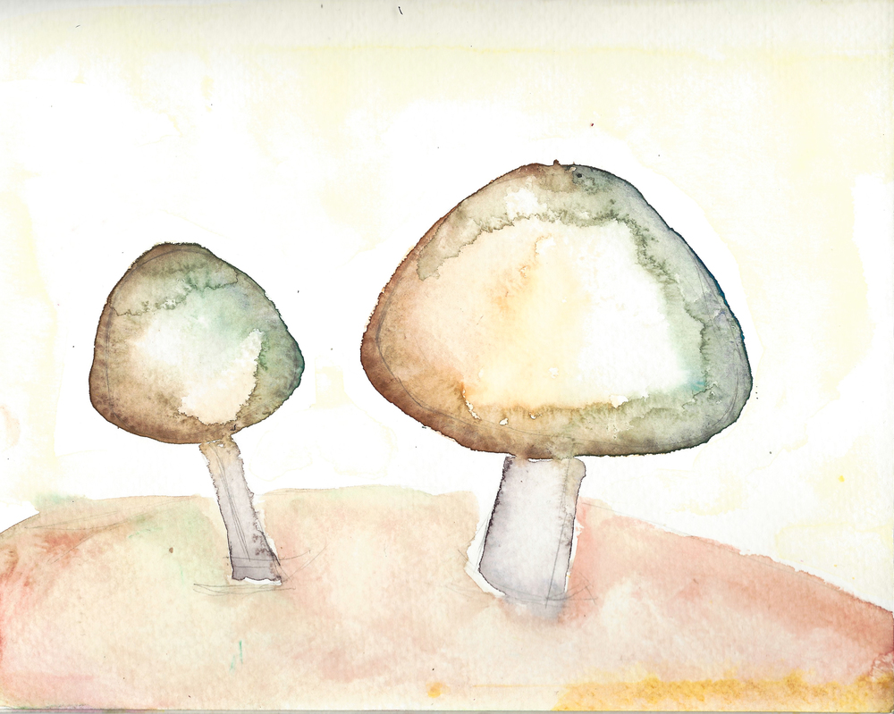 mushroomswatercolor_elanatenner_screen_elanatenner.jpg