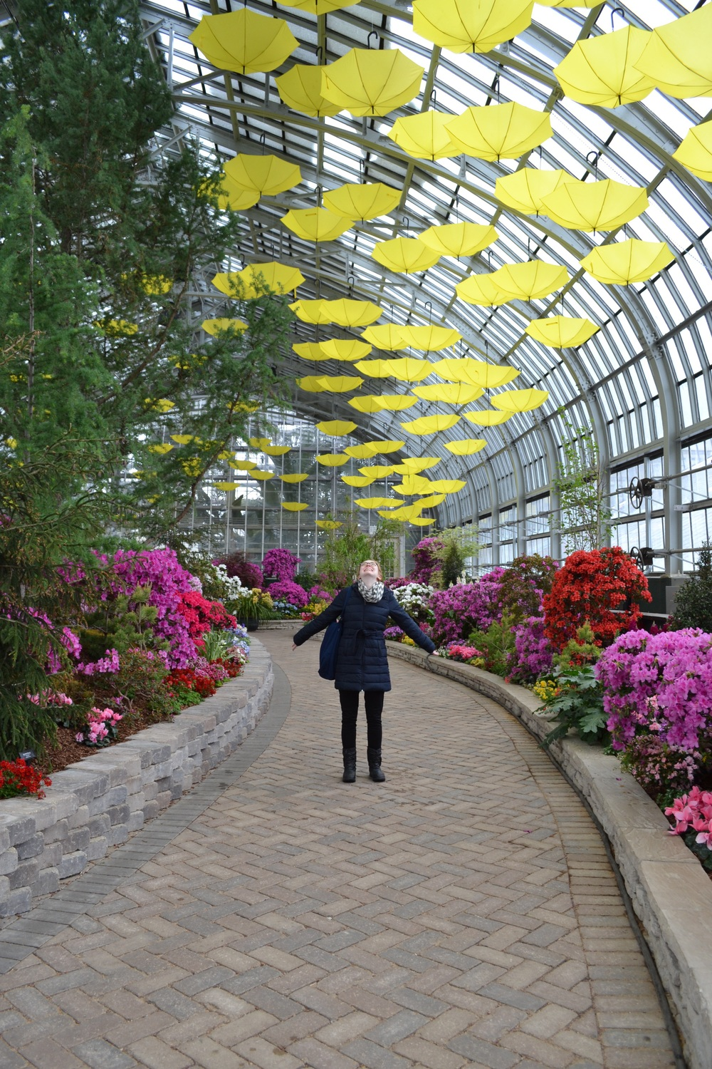 In flower heaven at the Garfield Conservatory