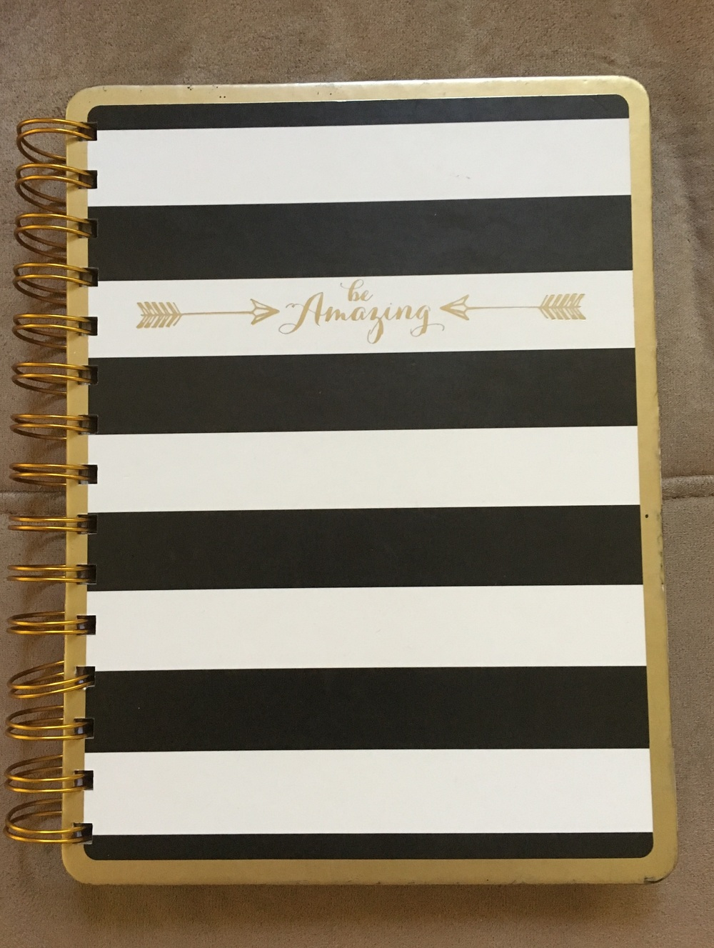 Bonus if your journal is as cute as this $4 one from Home Goods! :)