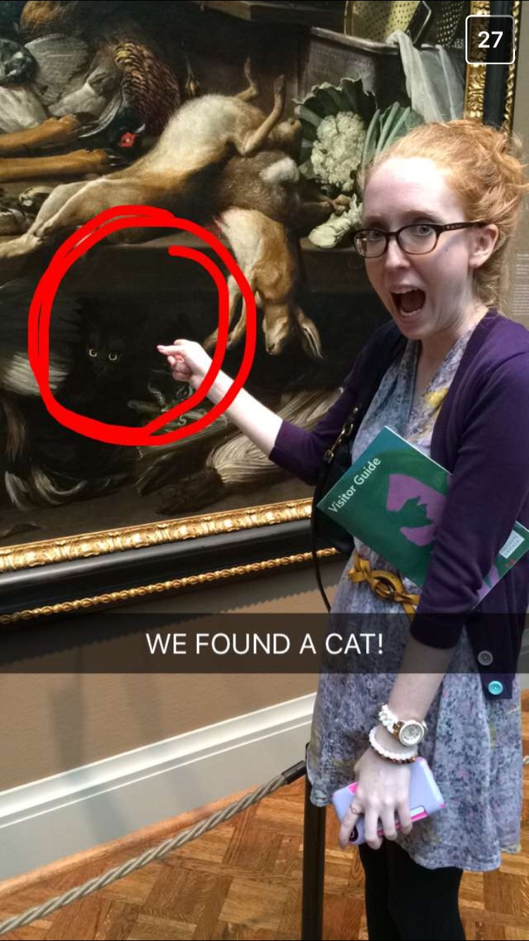 Neko Atsume: Museum Edition