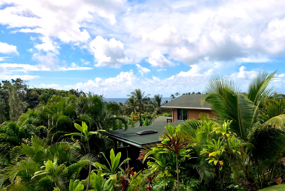 The View over Kalani Hawaii Private Lodging
