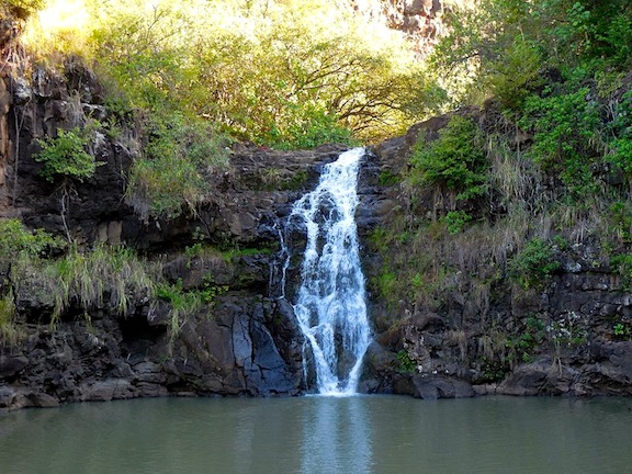 Waimea Valley & Falls