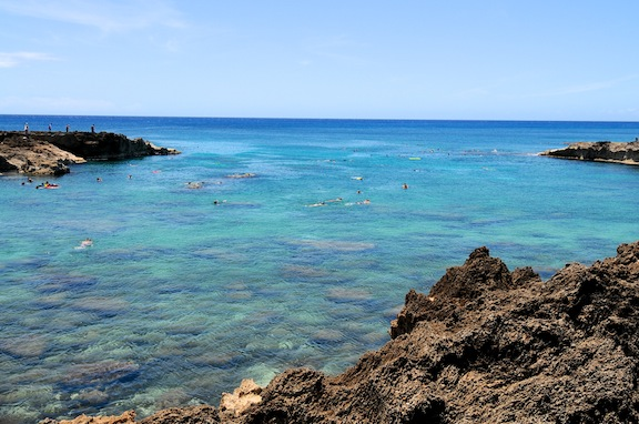 Sharks Cove, one of the best snorkel spots on the planet.