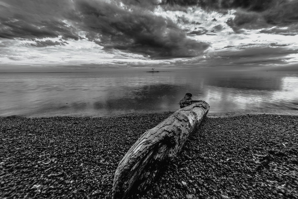 Log on beach North Bay