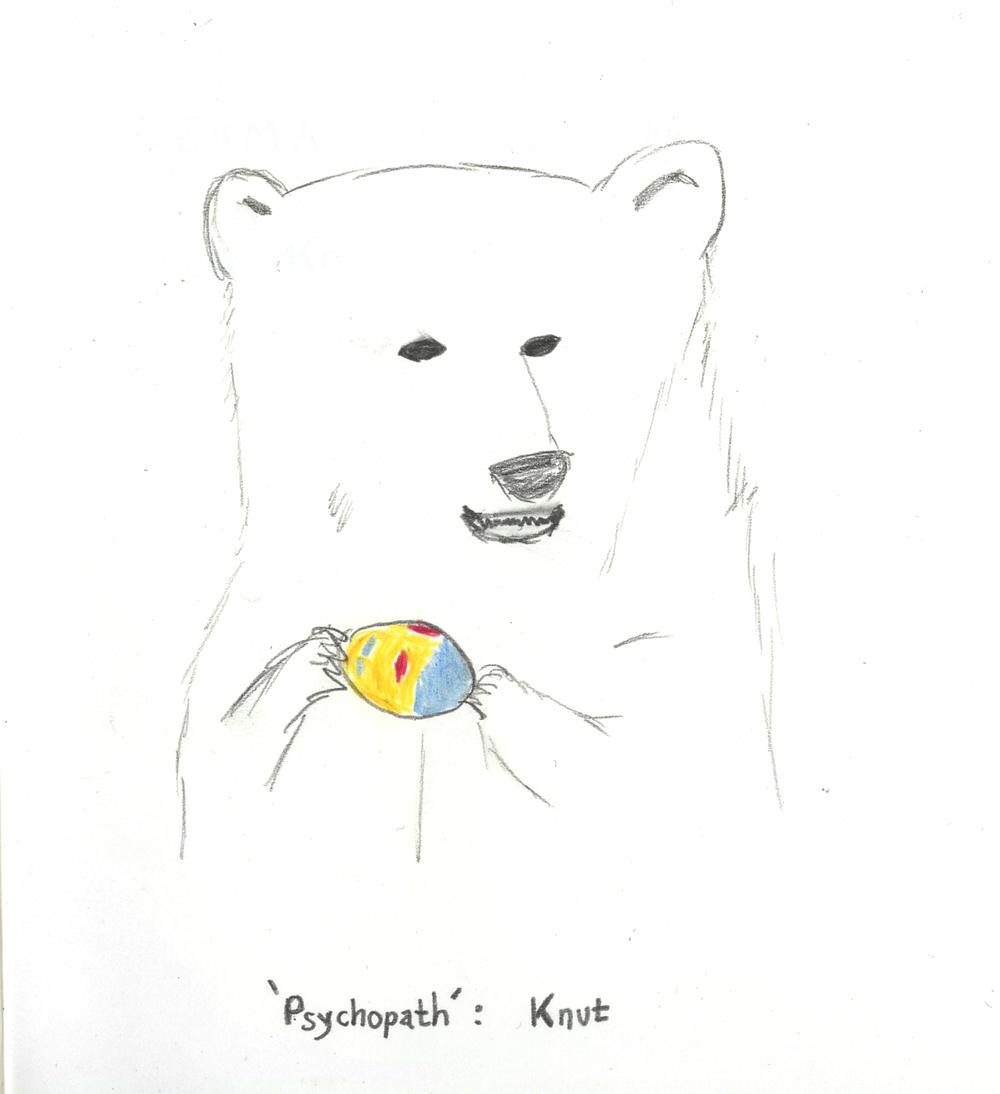 2009 cub separated from spooked polar bear u2014 sanja pahoki