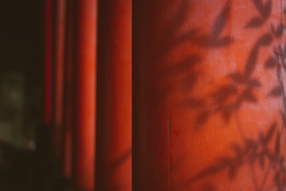 Bamboo shadows on the red torii of Fushimi Inari-taisha in Kyoto, Japan