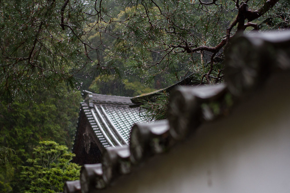 A forested temple in the rain in Kyoto, Japan