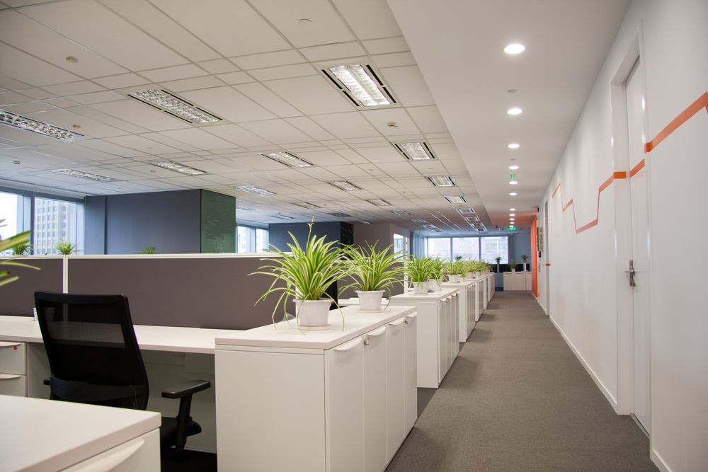 Property Ergonomics Sydney Work Health Safety Training Handling