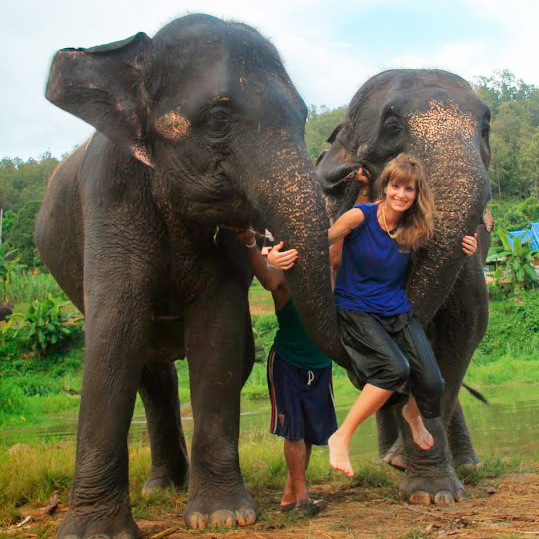 Chiang Mai Elephants Experience