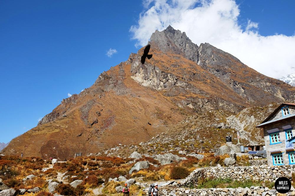 Himalayas peaks