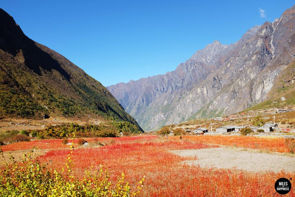 Himalayas nature