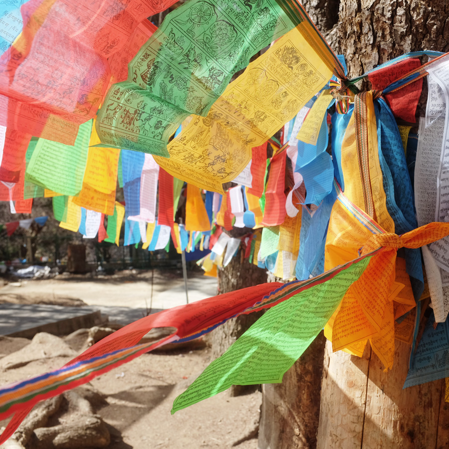 Yunnan4.jpg