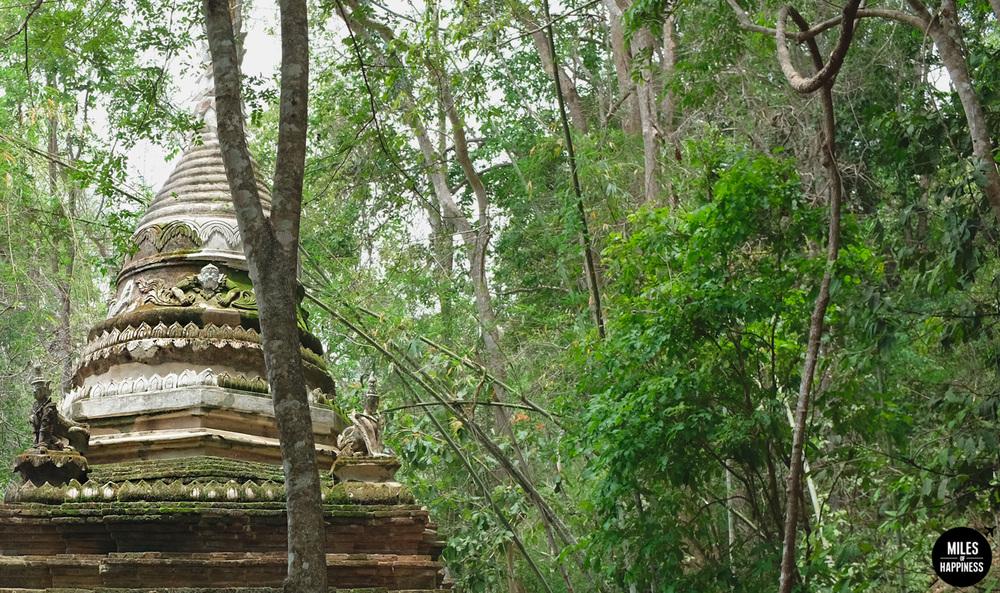 Wat-Pha-Lat-Jungle-Temple.jpg