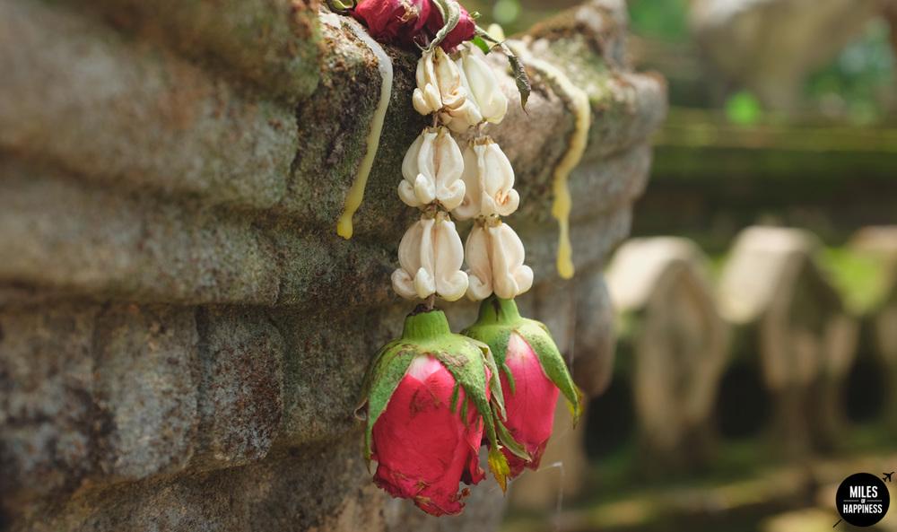 Wat-Pha-Lat-Flowers.jpg