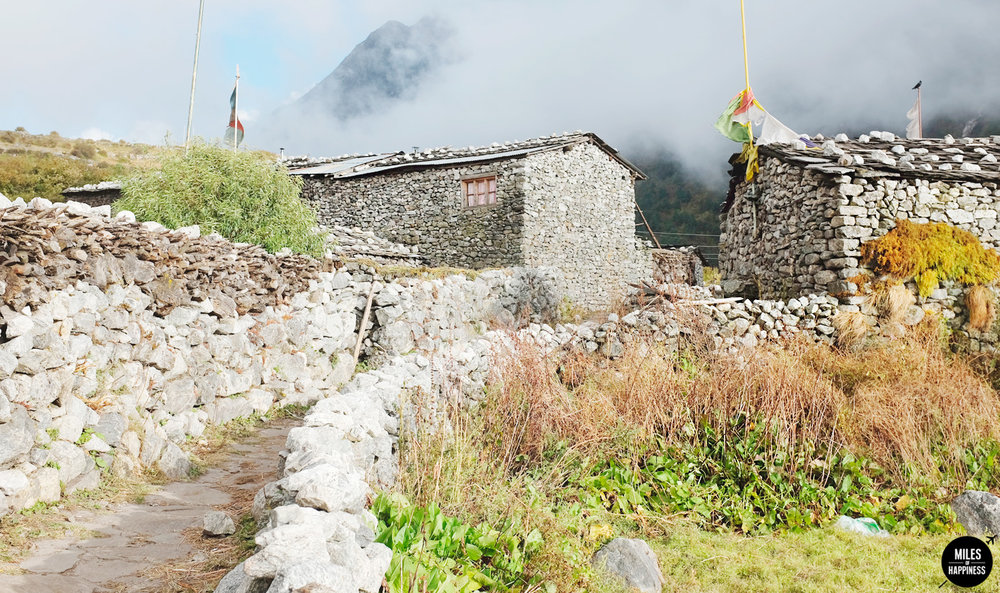 Trekking in the Himalayas: Langtang Valley