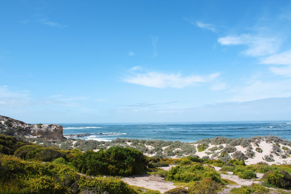 Into the wild: A Guide to Kangaroo Island [Photo: ©Eric Cowez]