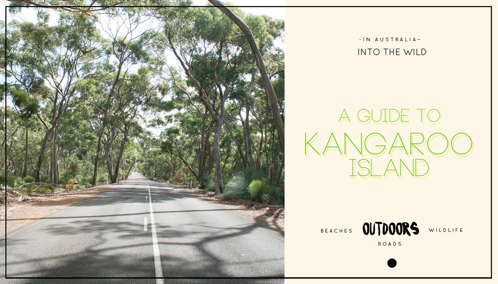 Into the wild: A Guide to Kangaroo Island