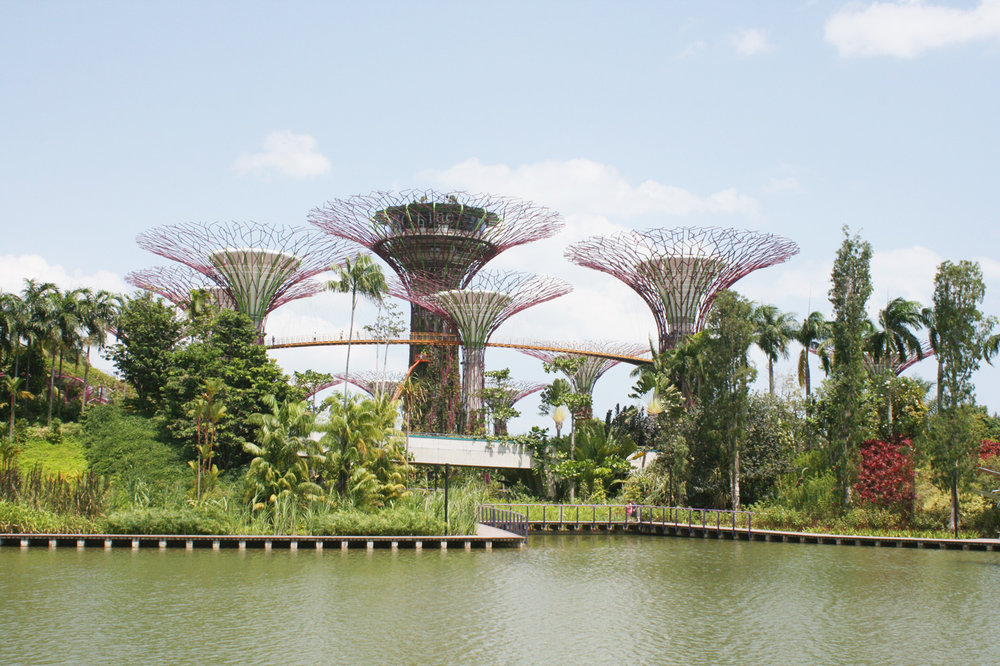 Discover Singapore -   the little red dot